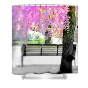 Come Sit By The Cherry Blossoms Shower Curtain
