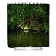 Comfort 1 Shower Curtain