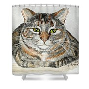 Comfortable Cat Shower Curtain