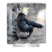 Comfy Rock Shower Curtain