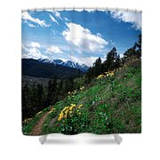 Comin' Round The Mountain Shower Curtain