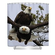Coming At Me 4 Shower Curtain