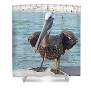 Coming For Dinner Shower Curtain