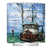 Coming Home Shower Curtain by Dianne Parks