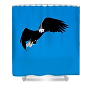 Coming In For A Closer Look Shower Curtain
