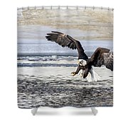 Coming In For The Catch Shower Curtain