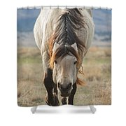 Coming My Way Shower Curtain