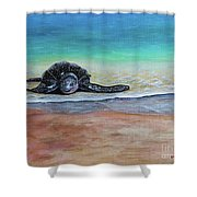 Coming To Nest Shower Curtain