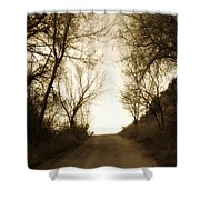 Coming Up The Drive 3 Shower Curtain