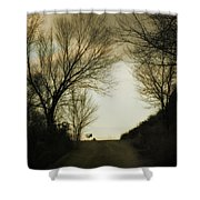 Coming Up The Drive Shower Curtain