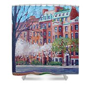 Comm Ave Magnolias Shower Curtain