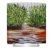 Commodore Creek Shower Curtain