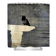 Common Grackle Shower Curtain