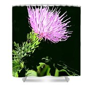 Common Weed Shower Curtain