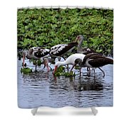 Community Pond Shower Curtain