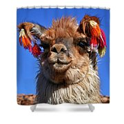 Como Se Llama Shower Curtain