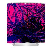 Complex Abstract Shower Curtain