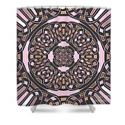 Complex Geometric Abstract Shower Curtain