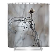 Complicated Means Not Single Shower Curtain