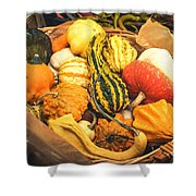 Composition Of Various Gourds In A Basket With Vignetting Shower Curtain