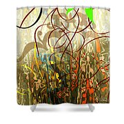 Concealed Treasure Shower Curtain