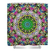 Concentric Colors Abstract Shower Curtain
