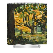 Concord Fall Trees Shower Curtain by Claire Gagnon