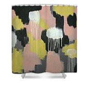 Concrete And Lemonade 1 Shower Curtain