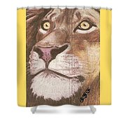 Concrete Lion Shower Curtain