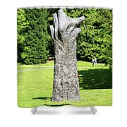 Concrete Tree On Campus Shower Curtain