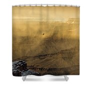 Condor In A Storm Shower Curtain