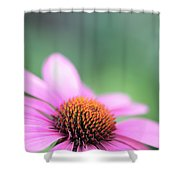 Cone Flower 2 Shower Curtain