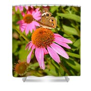 Cone Flower Visitor Shower Curtain