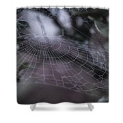 Cone Web Shower Curtain