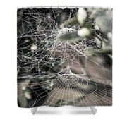 Cone Web With Dew Shower Curtain