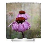 Coneflower Dream Shower Curtain