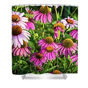 Coneflower Garden Shower Curtain