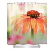 Coneflower 'hot Summer' Shower Curtain