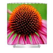 Coneflower Macro Shower Curtain
