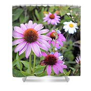 Coneflower Meadows Shower Curtain