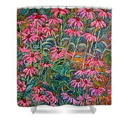 Coneflowers Shower Curtain