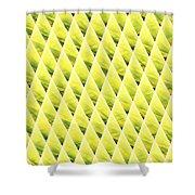 Coneland Shower Curtain