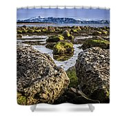Conglomerate Boulders, Green Point, Nl Shower Curtain