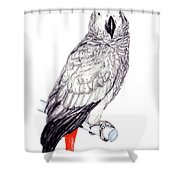 Congo African Grey Parrot Shower Curtain