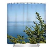 Coniferous Trees On Blue Sky Background Shower Curtain by Sergey Taran