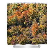 Connecticut Fall Color Shower Curtain