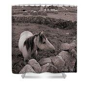 Connemura Horse-signed-#300 Shower Curtain