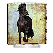 Conqueror Shower Curtain