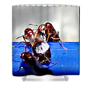 Consider The Ants 2 Of 3 Shower Curtain