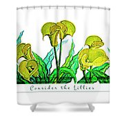 Consider The Lillies Shower Curtain